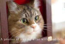 Keçe İğneleme Kedi